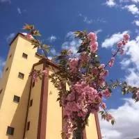 Hotel Mirador El Silo en acered