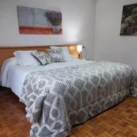Hotel Garden Lodge Hostal Evencio en castrelo-de-mino