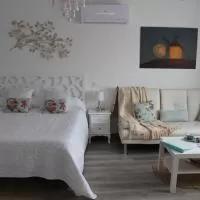 Hotel Apartamentos Oncemolinos en consuegra