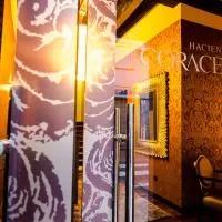 Hotel Hacienda la Coracera en el-tiemblo