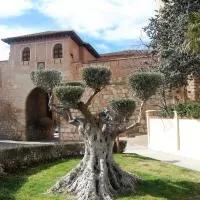 Hotel Daroca Alojamientos en langa-del-castillo