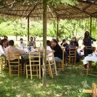 Hotel Albergue Molino de Olba en olba