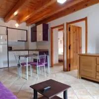 Hotel Apartamento & Barbacoa Pirineo (Jacetania/Valle de Roncal) en salvatierra-de-esca