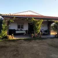Hotel Merida dormir entre olivos en san-pedro-de-merida