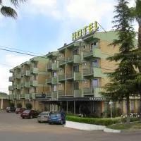 Hotel Hotel Veracruz en santa-amalia