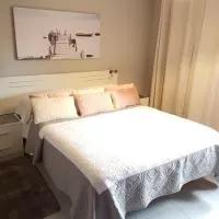 Hotel Hostal la Picota en santa-cruz-de-bezana