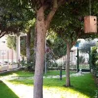 Hotel El olivo en torrecilla-de-la-abadesa