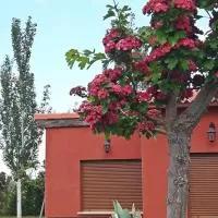 Hotel El Caminero en villaflor
