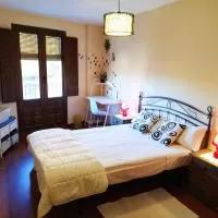 Hotel apartamentos la Fragua, medio en vinuesa