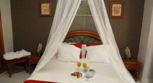 Mejores hoteles para dormir en Calasparra,…